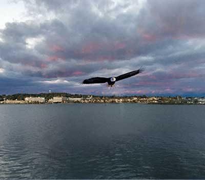 eagles-nest-suite-sturgeon-bay.jpg