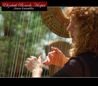 elizabeth-borsodi-harpist-arioso-ensemble.jpg