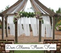 Door_Blooms_Flower_Farm.jpg