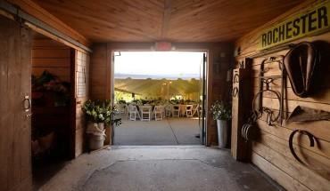 door-county-wedding-woodwalk-06