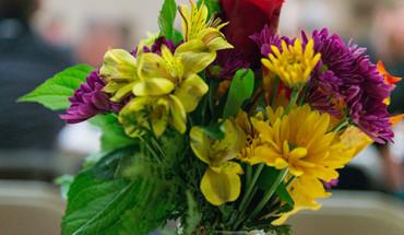 tasha-ustianowski-benefit-flowers-500